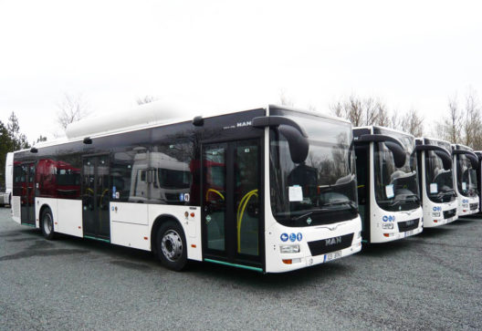 Man Lion's City CNG buss